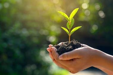 Quammen plantea que es necesario vivir en mayor equilibrio con la naturaleza.