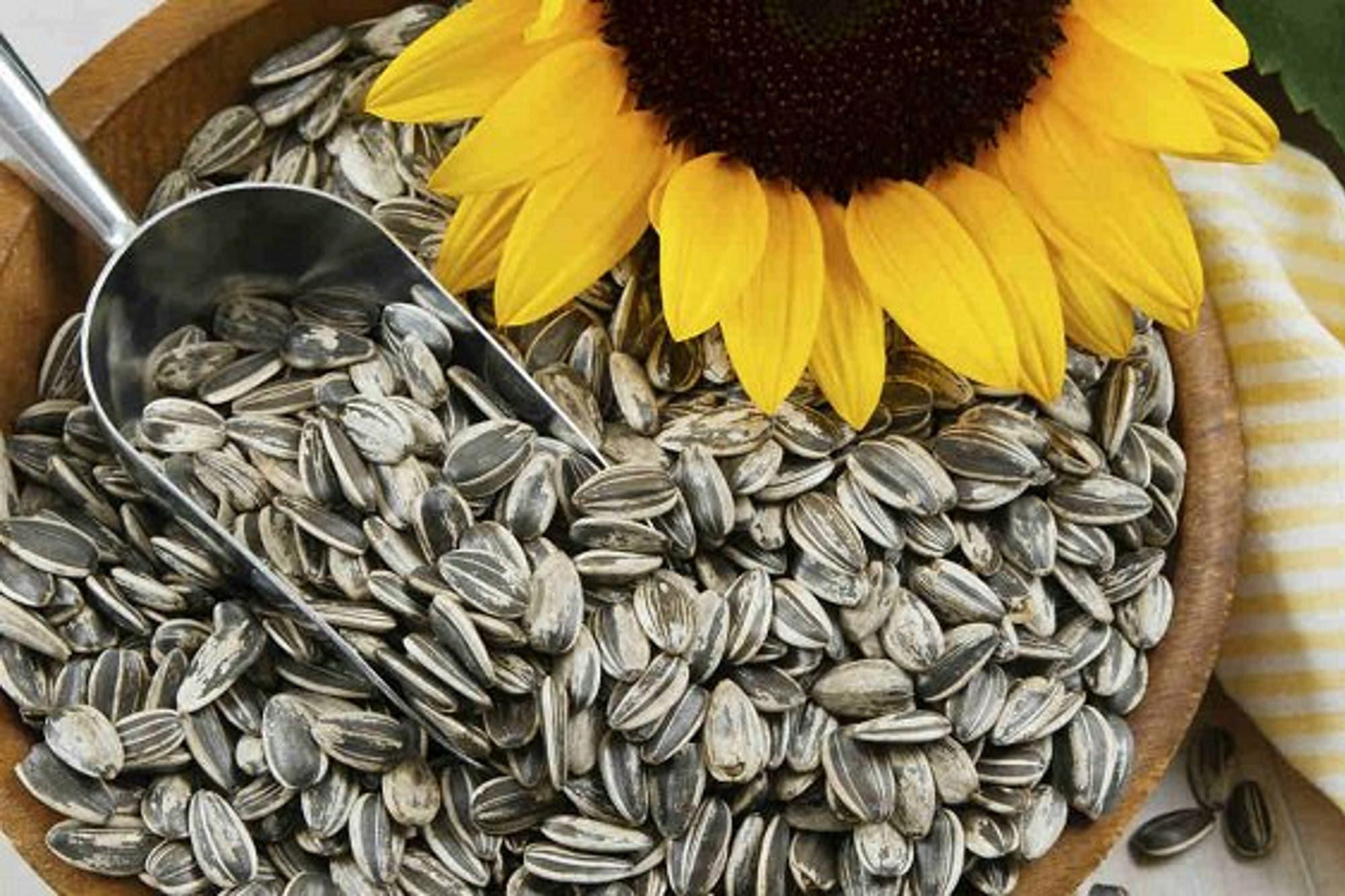 La Anmat prohibió unas semillas de girasol y varios snacks