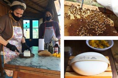 Cardo en flor, en General Lamadrid, trabaja con las riquezas que proporcionan las abejas: cera y miel.