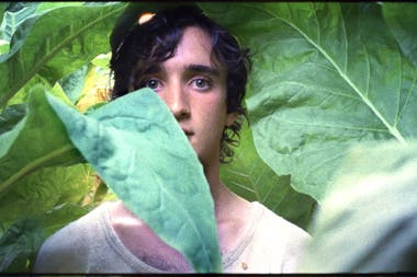 Lazzaro felice, film de la italiana Alice Rohrwacher