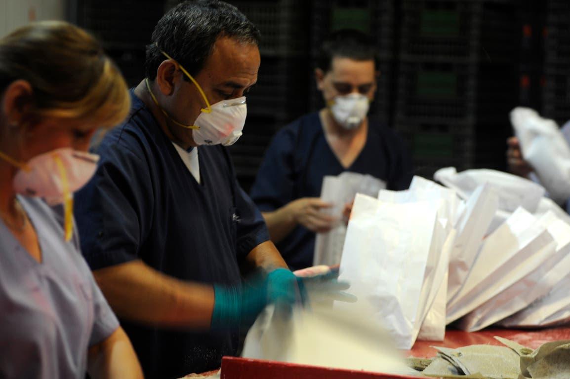 Personal de la bioplanta de producción del Iscamen desde donde salen los millones de insectos machos estériles para controlar la plaga.