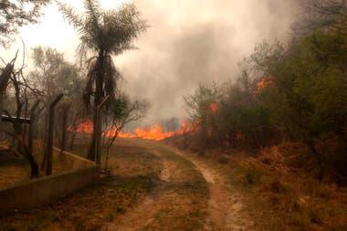 Incendio en el Parque Provincial San Cayetano, Corrientes. No hay bomberos disponibles para llegar a todos los focos