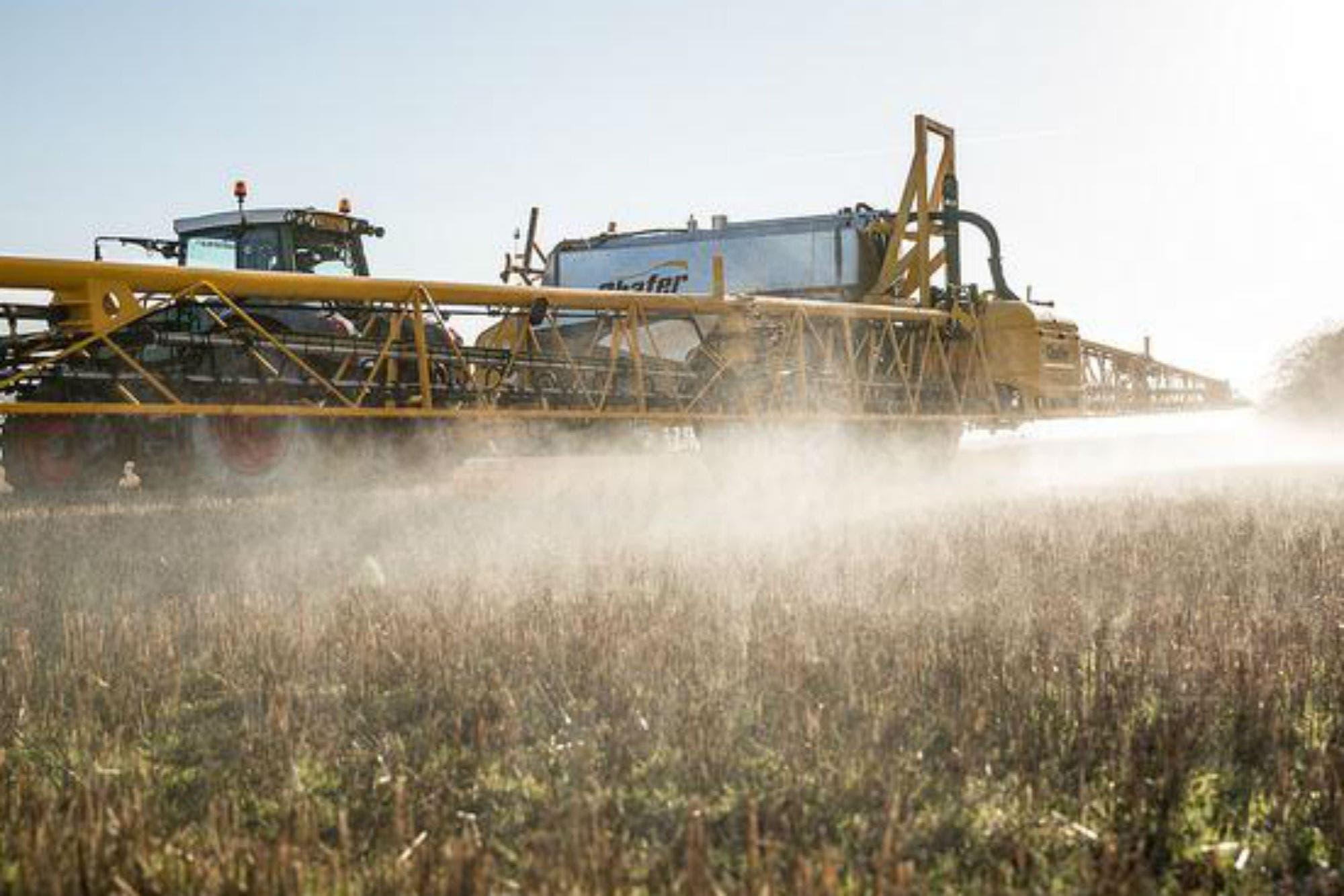Pergamino: evalúan apelar una cautelar que limitó el uso de agroquímicos
