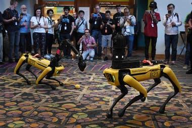 Una pareja de robots cuadrúpedos Spot recorren los pasillos de la feria Re:MARS en Las Vegas