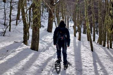 """Caminatas con raquetas, para explorar la """"trastienda"""" del centro de esquí"""