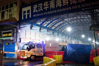 El mercado mayorista de mariscos de Huanan, en Wuhan, fue cerrado el 1 de enero de 2020