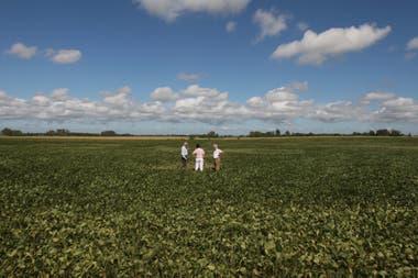 Hay productores que activaron una demanda de último momento para sembrar