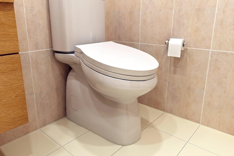 Proponen instalar inodoros inclinados en las oficinas para que la gente no pase más de 5 minutos en el baño