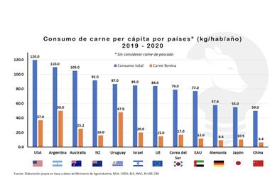 Los argentinos somos los mayores consumidores de carne vacuna por habitante y por año del mundo, seguido de Uruguay y Estados Unidos en tercer lugar con menos de 40 kg/hab/año