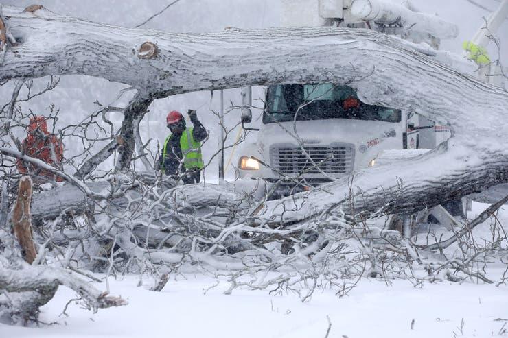 La tormenta volteó árboles y varias calles quedaron cerradas al tránsito