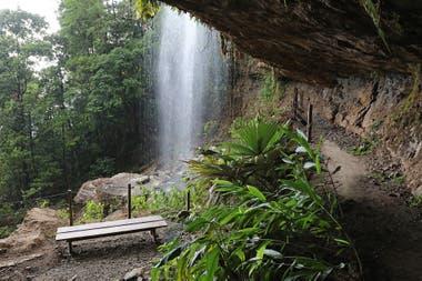 La cueva espera tras una cascada en plena selva