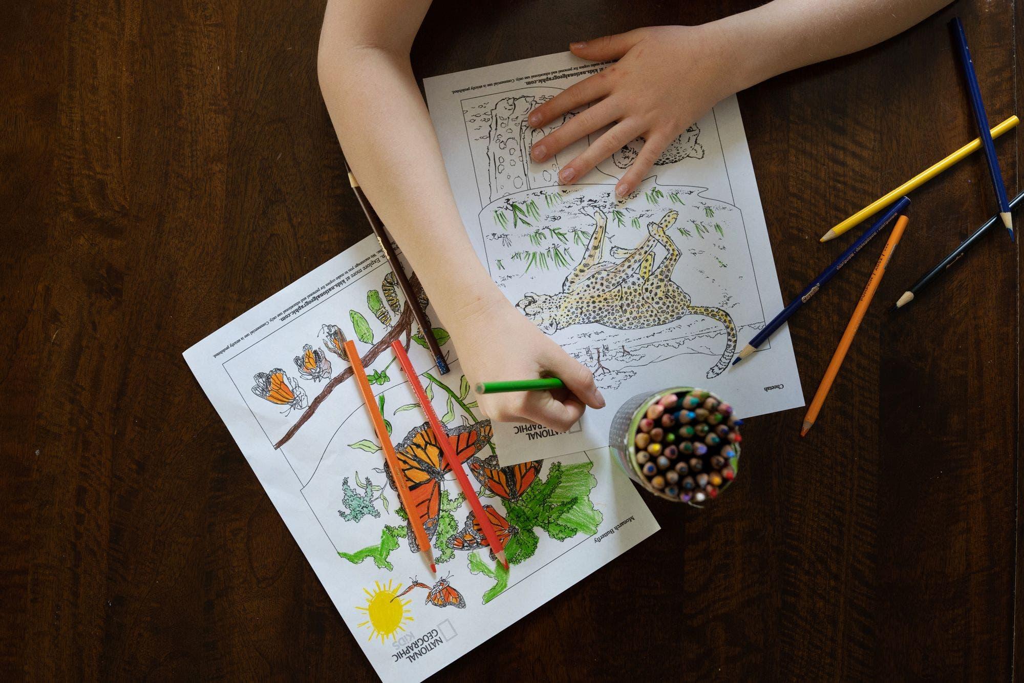 Aplicaciones que ayudan para hacer las tareas escolares en casa