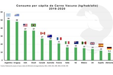 En Alemania y China, la carne al consumidor es 2,5 veces más cara, en Australia y Nueva Zelanda 2,8 veces más, mientras que en Francia se cuadriplica
