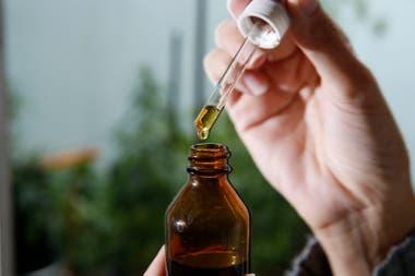 El proyecto estipula que se promoverá y estimulará la producción pública de medicamentos a base de Cannabis y formas farmacéuticas derivadas
