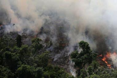 Aximoff dice que la prevención a la larga es menos costosa que los recursos necesarios para combatir incendios