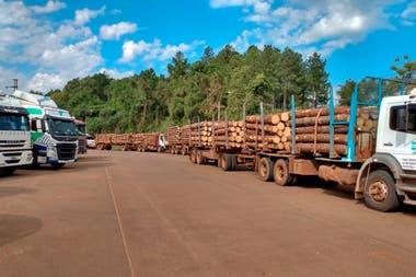 En Misiones se vive un boom maderero, ligado a la construcción