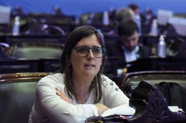 La diputada nacional Brenda Austin presentó un proyecto de ley de Emergencia Educativa Nacional, que se encuentra en la Comisión de Educación