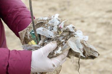 El 86% de la basura encontrada en la costa bonaerense era plástica