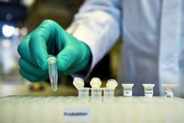 Coronavirus: ¿cómo y cuánto se testea en la Argentina y el resto ...