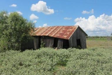 Construcción abandonada de aparceros en lo que era la plantación de los Weisiger y donde nació William Ellis, en el sur de Texas
