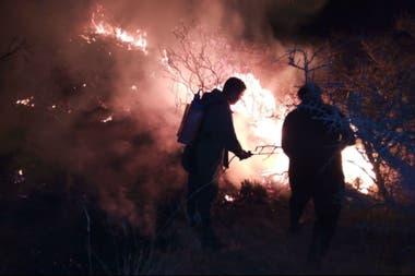 Bomberos y vecinos ayudaron a controlar el fuego en el campo de Roque