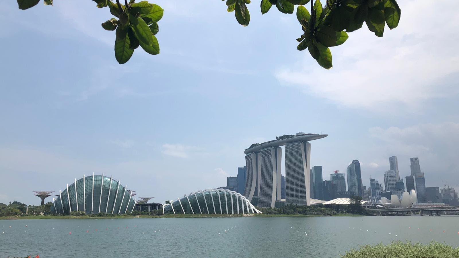 En 1965, Singapur tenía serios problemas: desempleo, mano de obra mal educada, vivienda de mala calidad. Los británicos lo habían convertido en un país de reexportación a través de su puerto. La idea fue convertir a Singapur en un país exportador. Para resolver los problemas del país a la vez que at