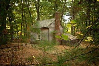 Thoreau Vuelve La Cabaña De Walden Una Utopía Política