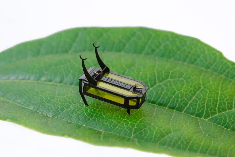 Crean un mini escarabajo capaz de caminar 2 horas sin usar una batería