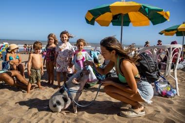 Chanchi se transformó en uno de los atractivos en las playas del centro de Pinamar