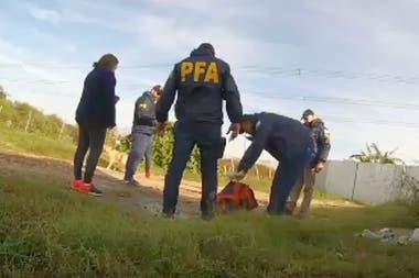 Personal del Ministerio de Seguridad organiza procedimientos falsos para verificar el comportamiento y la capacitación de las fuerzas de seguridad federales