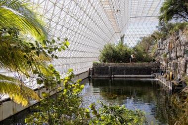 En el interior se reproduce una microselva tropical húmeda, un rincón de desierto, un fragmento de sabana arbustiva y un diminuto manglar