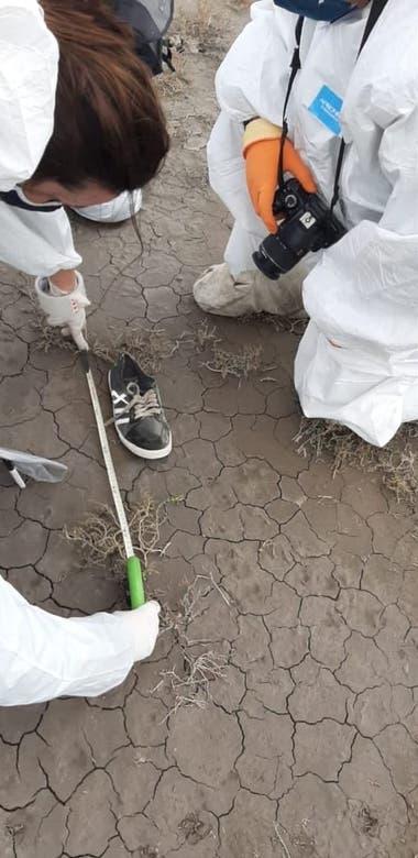 Una zapatilla hallada en el lugar donde fueron encontrados los restos sería de Facundo Astudillo Castro