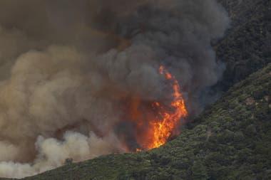Incendios en Monrovia, California
