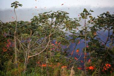 Las explosiones del volcán elevan lava hasta una altura de 30 metros