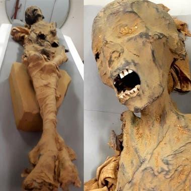 Los restos de esta mujer, descubiertos en Luxor, en 1881, fueron analizados a través de tomografías computadas