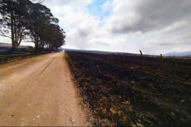 Los campos consumidos por los incendios a la vera de las rutas provinciales