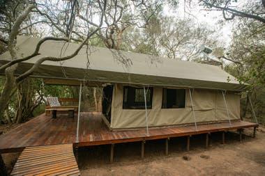 La estación de campo está terminada y montada sobre plataformas y pasarelas de madera, elevadas sobre el suelo, para que los animales puedan circular libremente.