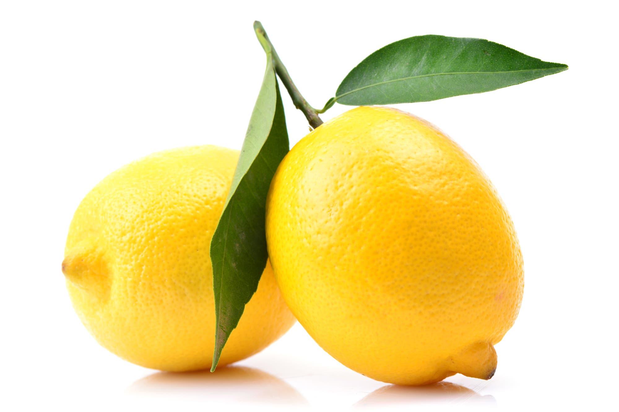 Limones: un escenario para crecer y con desafíos - LA NACION