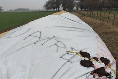"""El silobolsa roto al contratista Ricardo Kling con la inscripción """"Uatre"""". Kling cree que usaron el nombre de ese gremio"""