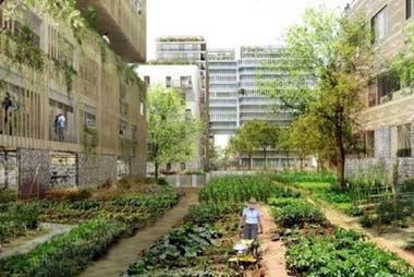 París busca incentivar que los barrios puedan tener sus propias huertas reutilizando espacios libres entre las viviendas.