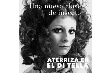 En los tiempos iniciáticos del Instituto Di Tella, la irreverencia de Nacha generaba la ira de los críticos de arte conservadores