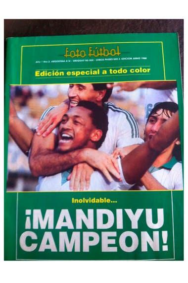 Mandiyú, de Corrientes, ganó el Nacional B en 1988 y ascendió a la primera A, en la que permaneció siete temporadas; fue el club más estable del noroeste nacional en la categoría de elite.