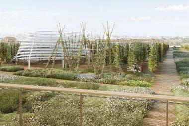 Sin pesticidas ni agroquímicos, Agripolis utilizará un sistema de cultivo vertical para producir sus frutas y verduras al aire libre