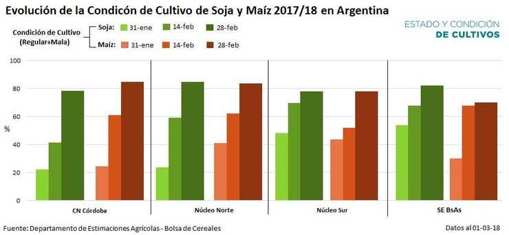 La condición actual de la soja y el maíz en el país