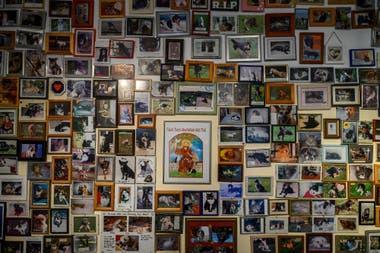 """Cientos de fotografías de mascotas fallecidas cuelgan en una """"capilla"""" donde los visitantes pueden disfrutar de un momento de meditación silenciosa"""