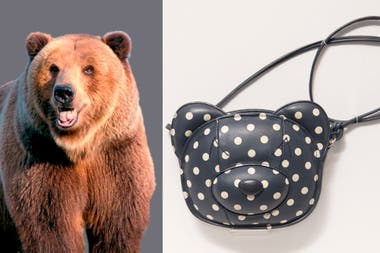 El contorno de la cara de un oso en una bandolera
