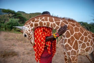Santuario de elefantes Reteti, Kenia. Autora: Ami Vitale | Missoula, Estados Unidos