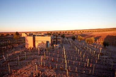 Los hospedajes en medio de las viñas, y cerca de la Cordillera de los Andes, son una de las opciones ideales de quienes buscan servicios de excelencia.