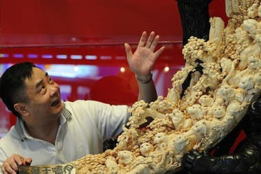 China es uno de los principales consumidores de marfil en el mundo