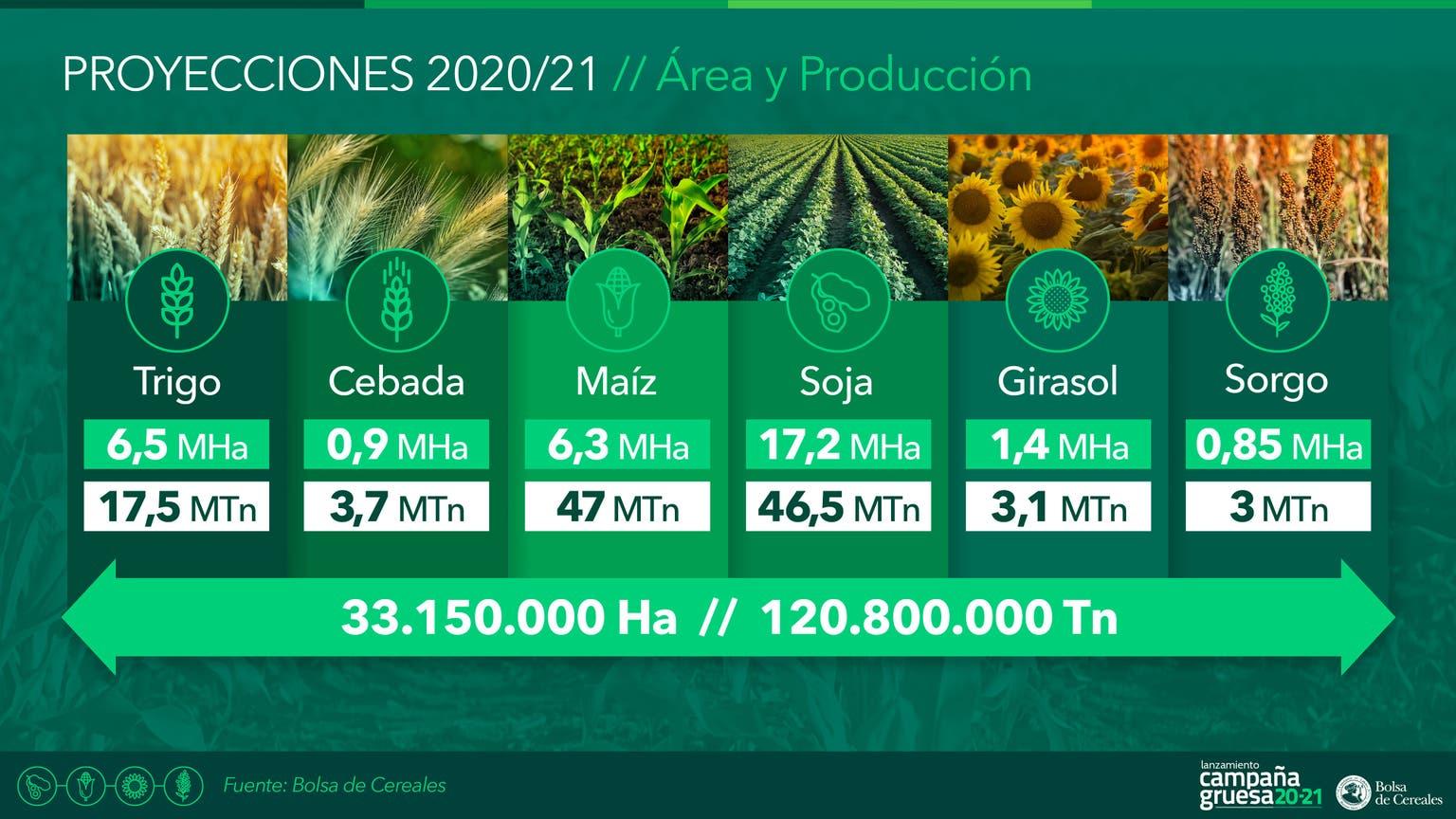 Las estimaciones de área y producción 2020/2021